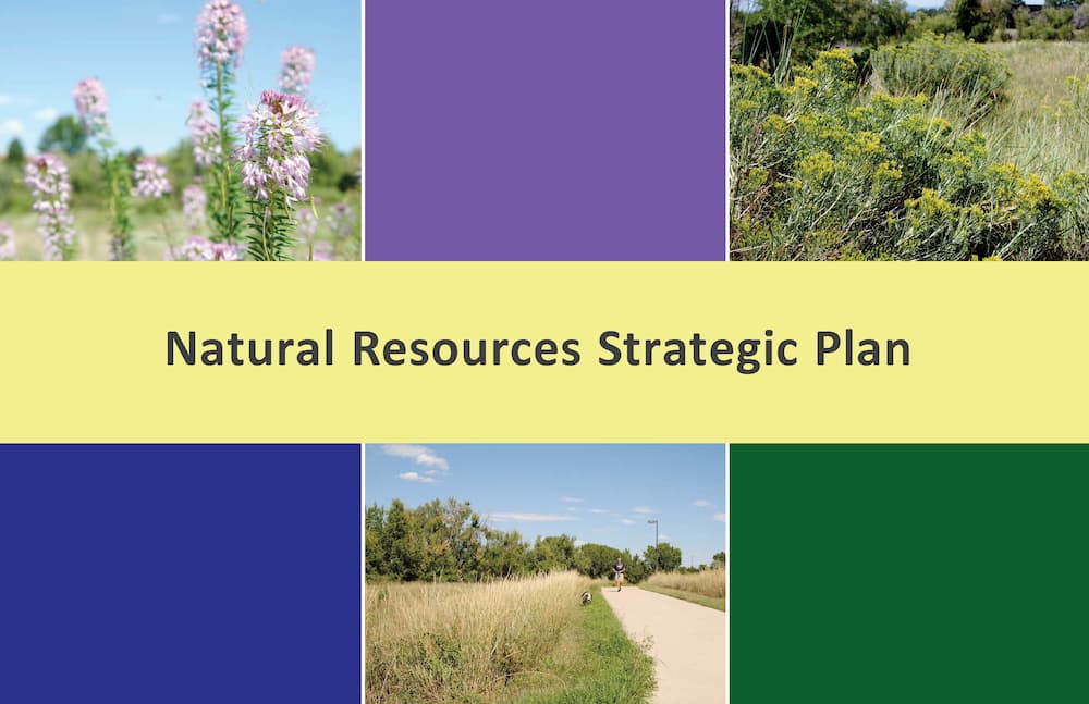 Natural Resources Strategic Plan 2019 Capstone by Dillon Mcbride