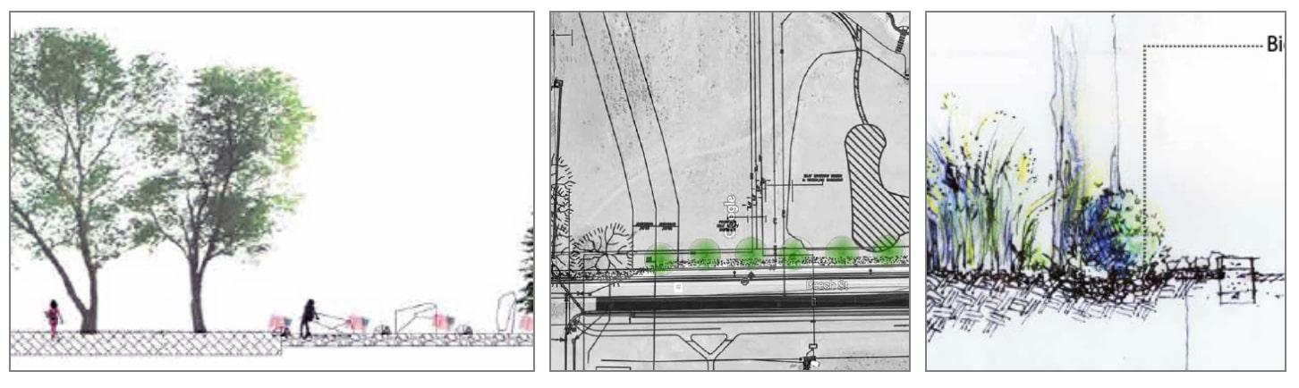 Beech Street Landscape Concepts