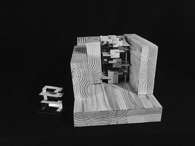 Figure Field